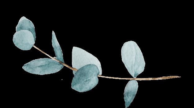 Leaf Graphics